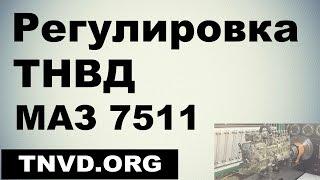 Регулировка ТНВД МАЗ 7511