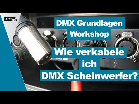 Wie verkabele ich Scheinwerfer mit DMX? - DMX Grundlagen Tutorial für Anfänger | stage.basic