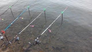 Рыбалка в земетчино пензенской области о рыбалке