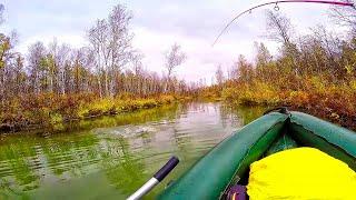 Рыбалка на щуку осень