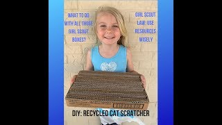 Troop 4838 Girl Scout Box Recycled Into Cat Scratcher