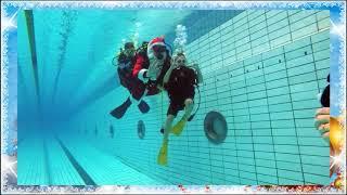 Подводные поздравления с наступающими праздниками всей планете от Альфа-дайверов!