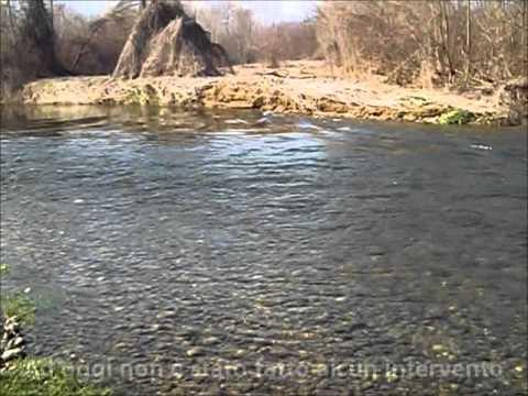 La pesca in Podolsk una fotografia