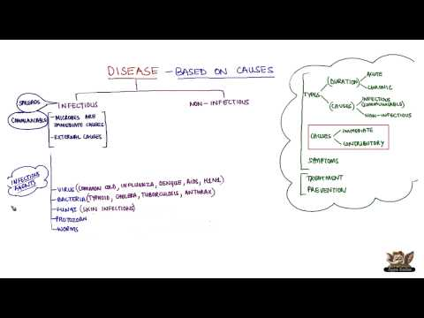 Video Disease - Based on Causes