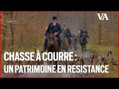 [Vidéo] Chasse à courre : zoom sur un patrimoine menacé par l'antispécisme