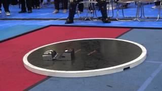 Смотреть онлайн Японское сумо роботов