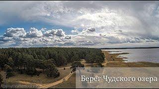 Платная рыбалка в псковской области гдовский район