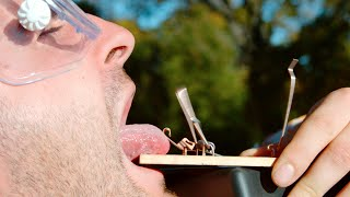 Tongue in a Mouse Trap - The Slow Mo Guys