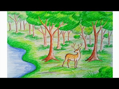 Easy forest drawing images galleries for Forest scene drawing