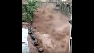 "Urgent: ""Cataclysmic Sierra Leone Mudslide 270 Dead Thousands Missing"""