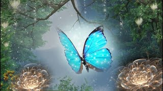 """Peaceful Music, Relaxing Music, Instrumental Music, Celtic Music """"Magical Forest"""" """""""