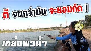 ตีปลาช่อน เหยื่อผิวน้ำ แพ้อมเกลือ | เด็กตกปลา