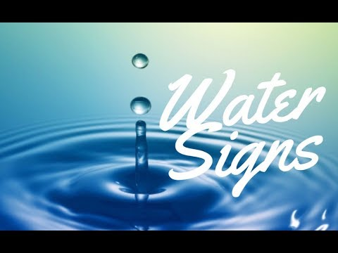 WATER SIGNS (Cancer, Scorpio & Pisces) | Hannah's Elsewhere