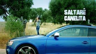 Canelita   Saltaré (Video Oficial)