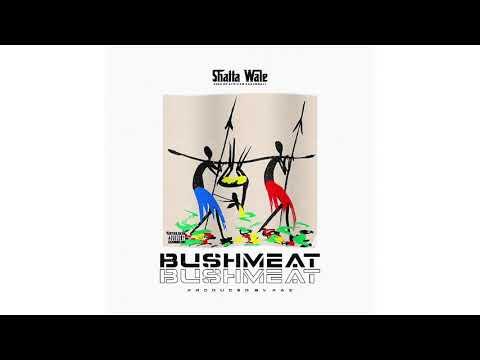 Music: Shatta Wale – Bushmeat