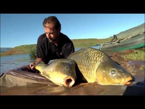 La pesca nel fiume una ciminiera