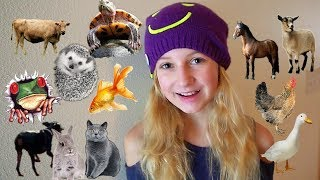 All MY Animals In One Video
