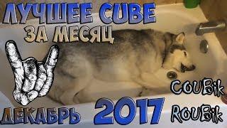 Лучшее CUBE видео по версии COUBik за Месяц Декабрь 2017