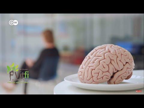 ¿Nuestro Cerebro Es Lo Que Comemos?