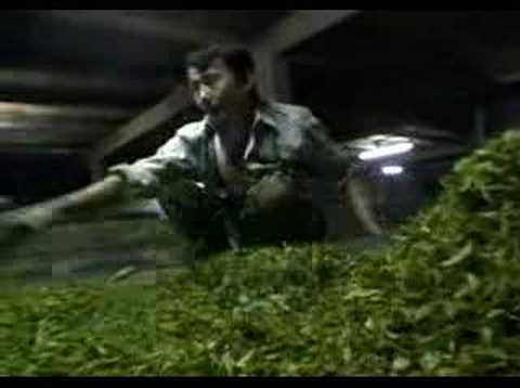 Darjeeling video