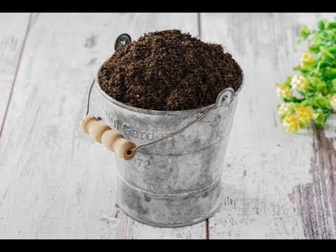 ЗЕМЛЯ для комнатных растений. Основные компоненты ГРУНТОСМЕСЕЙ