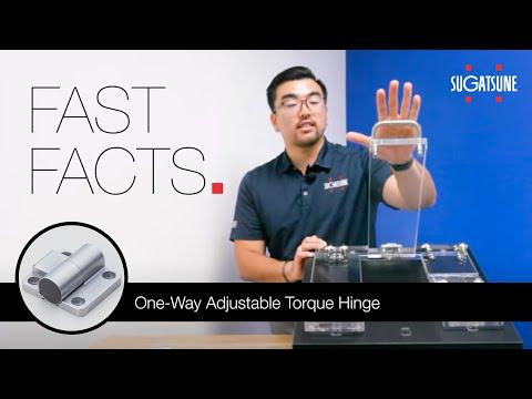 Fast Facts: One-Way Adjustable Torque Hinge HG TQJ100
