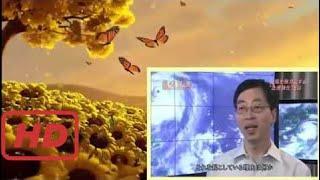 """NHKスペシャル第2集「スーパー台風""""海の異変""""の最悪シナリオ」/地球最強の気象災害「スーパー台風」の脅威"""
