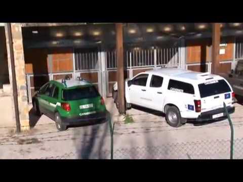 Carabinieri Forestali presso l'Ufficio Tecnico del Comune di Castellabate, controlli in corso
