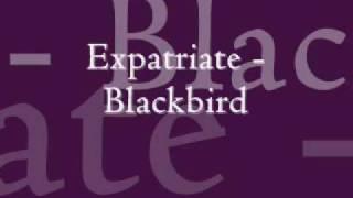 Expatriate - Blackbird