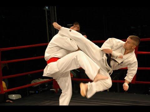 Best Kyokushin Karate 'KO' in History