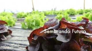 preview picture of video 'La Verdolaga. Sembrando Futuro'