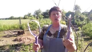 Удаление сорняков с помощью петли Фокина видео