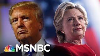 Few Precedents For Popular Vote Gap Like 2016 Presidential Election | Rachel Maddow | MSNBC