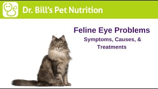 Feline Eye Problems | Symptoms & Causes | Dr. Bills Pet Nutrition