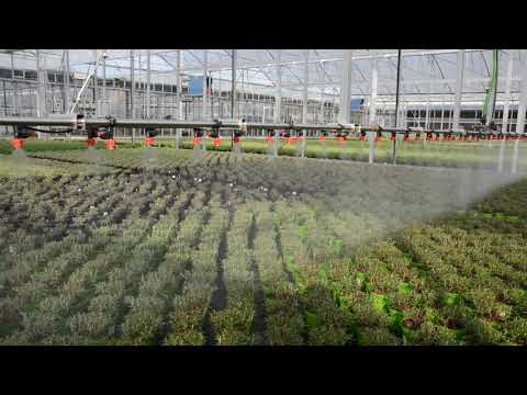 Water Irrigation System/ Watering Booms