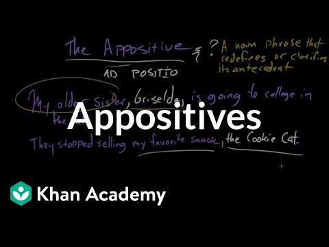 diagram appositive phrases of a netball court appositives video khan academy
