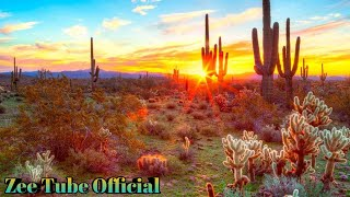 The mOst Beautiful Desert in The World || Beautiful Fly Over FPV Cinematic Drone Clip || FHD ||