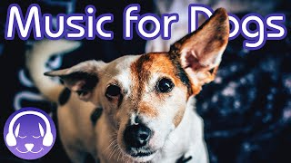 Music to Soothe Your Dog - 15 Hours of Relaxing Dog Therapy Music!