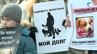 Частью всероссийской акции стал митинг зоозащитников в центре Великого Новгорода