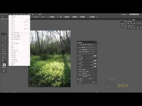 Adobe Photoshop - Tutorial 14 - Working Between Photoshop and Illustrator