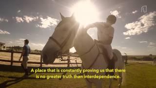 Vídeo é um manifesto dos apaixonados por cavalos
