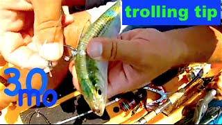 "KAYAK FISHING ""TIPS w/ TY"" rubber band rig live bait for kayak trolling"