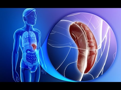 Диф диагностика при гепатитах и циррозе печени