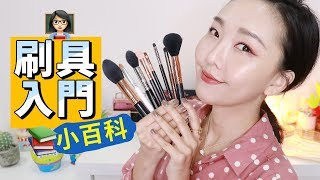 THE ONLY 8 BRUSHES YOU WILL EVER NEED! BEGINNER MUST WATCH