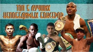 Топ 5 лучших НЕПОБЕДИМЫХ боксеров