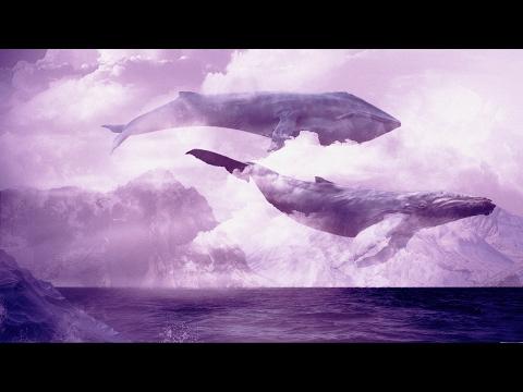 Синий кит в небе,идеальная музыка для расслабления.