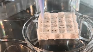 video: Injured Mars astronauts could heal themselves using artificial skin 3D printed from their own cells