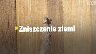 Skutki suszy. Czym grozi susza w Polsce?