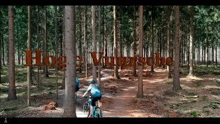 A video tour of the Hoge Vuursche loop.
