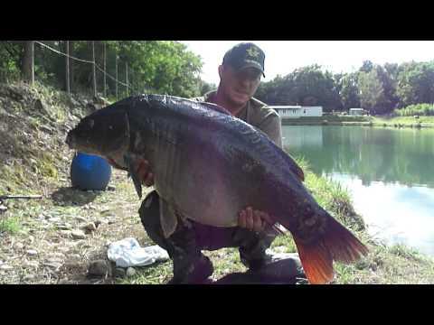 Comprare una causa per pescare in Tambov